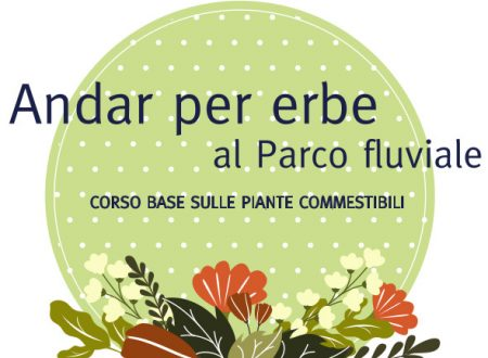"""Inizia il 6 Aprile """"Andar per erbe al Parco fluviale"""". Corso base sulle piante spontanee commestibili"""