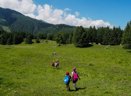 Summer Camp in Terre Alte