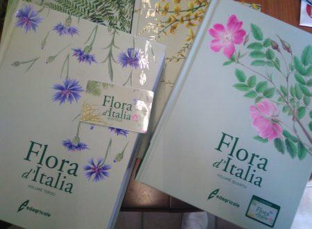 4-5 Maggio. Weekend botanico per studenti universitari